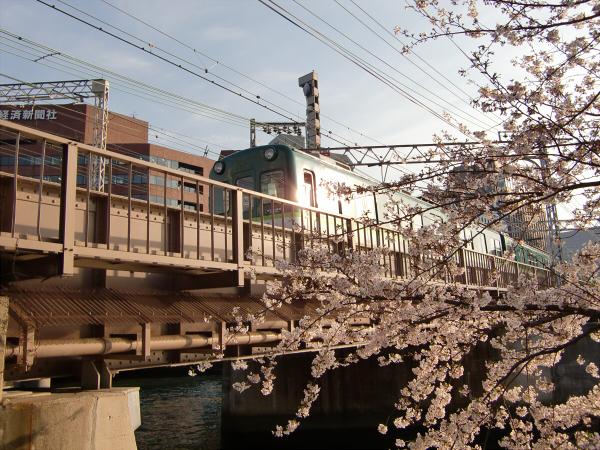 桜のついでに京阪電車1