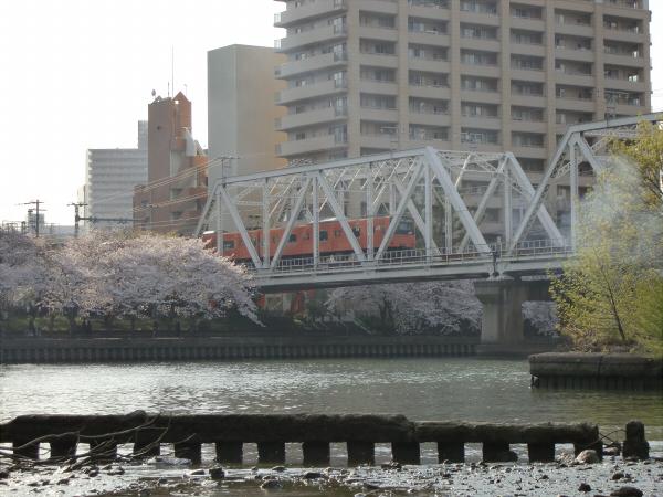 桜とJRの写真3