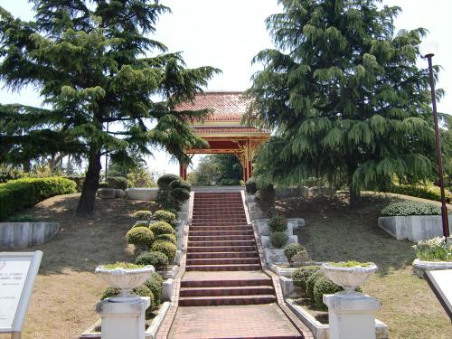 花博記念公園世界の樹09