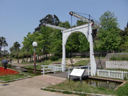 花博記念公園世界の樹11