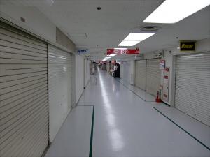 船場まつり・御堂筋kappo02-2