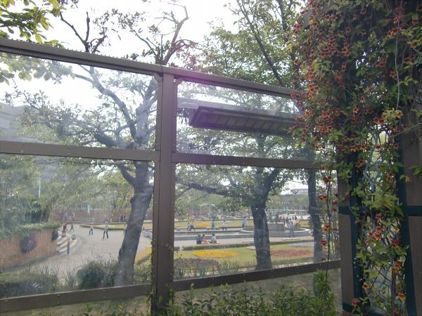 天王寺近辺のスポットの写真6