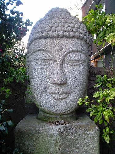 神戸 鱗の家・鱗の美術館5