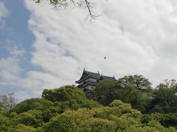 和歌山城でブラブラ散策1-3