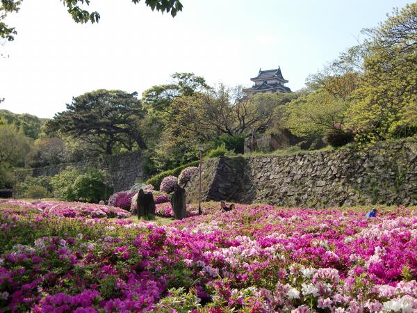 和歌山城でブラブラ散策した写真3-3