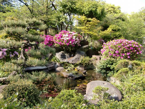和歌山城でブラブラ散策した写真3-4
