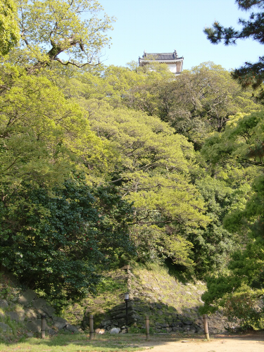 和歌山城でブラブラ散策した写真3-6