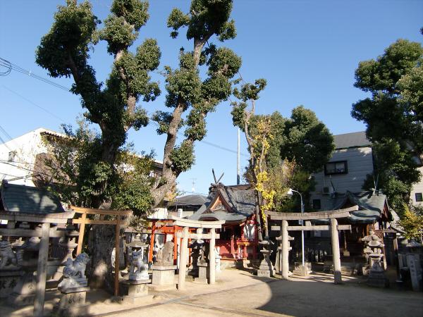 八尾近辺の神社など3