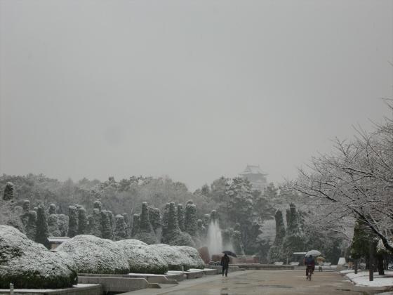 雪化粧の大阪城01