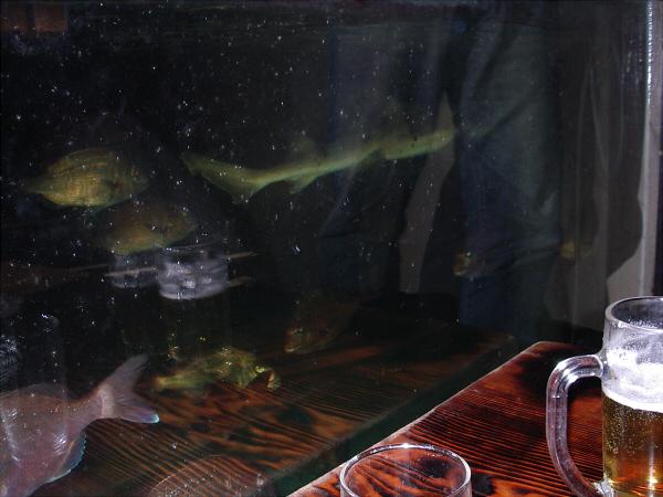釣堀居酒屋「ざうお」03