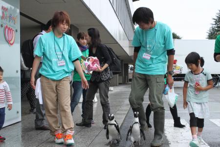 ハートプラザ ペンギン散歩