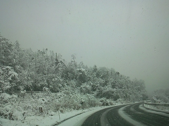 2011雪02
