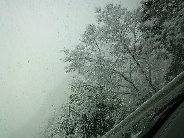 2011雪03