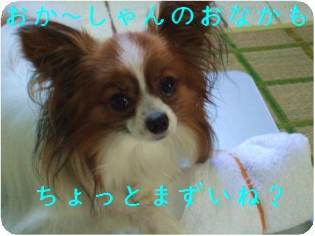 DSCF2256.jpg