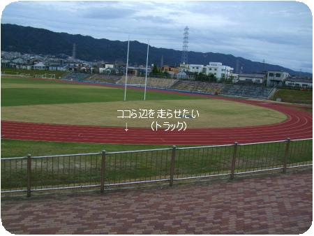 DSCF3212.png