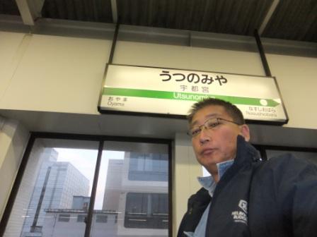 2012_01100159.jpg
