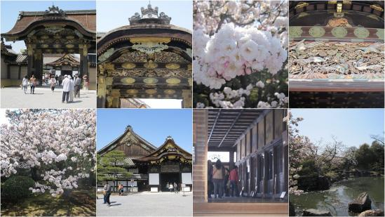 s-2011-04-13 二条城と京都御苑2