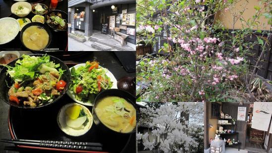s-2011-04-28 大分熊本3