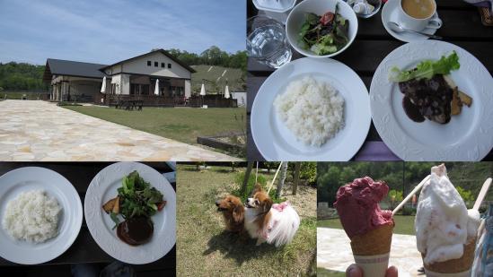 s-2011-05-16 世羅と大山
