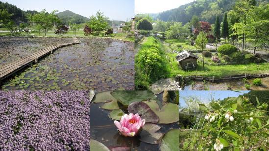 s-2011-05-20 三田1
