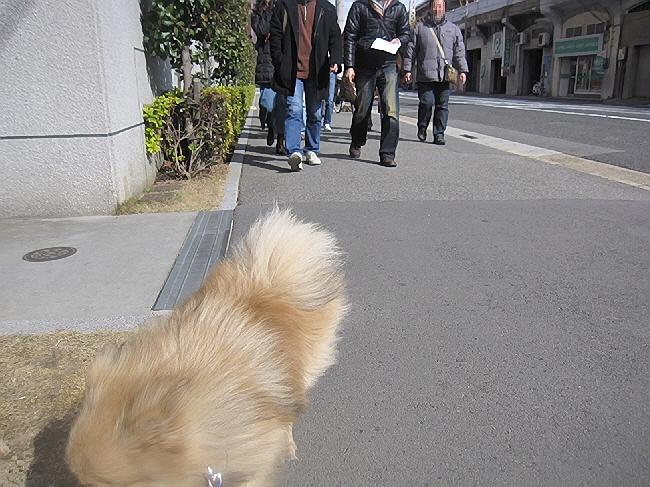 第4回長田下町こなもんツアー(*^_^*)