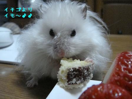 イチゴよりイモ~♪♪
