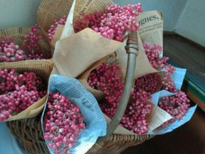 papperberry2.jpg
