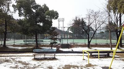 momokubari06.jpg