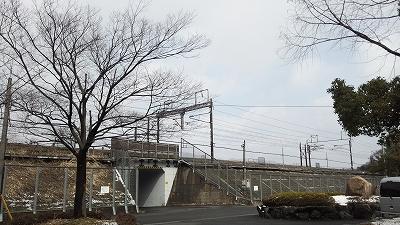 momokubari13.jpg