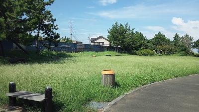 tiyozaki04.jpg