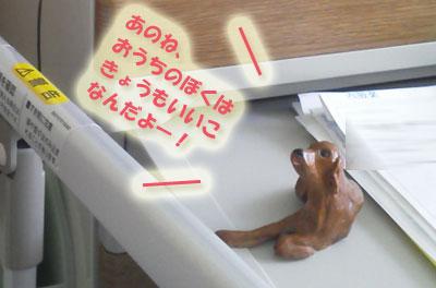 NEC_00331.jpg