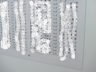 20110205IMG_0134.jpg