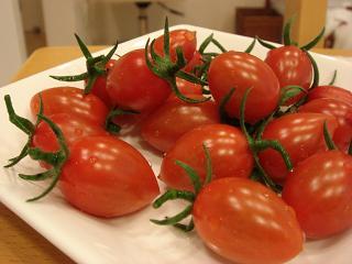 2010ミニトマト
