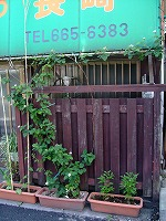 2010_0601三日月豆0010