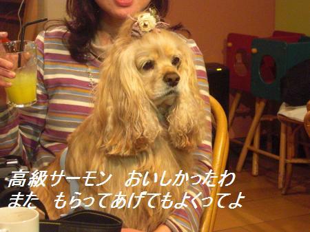 051_convert_20110329230937.jpg