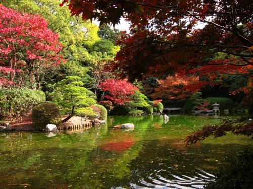 友泉亭公園 庭園