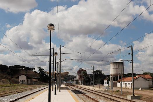 20111005c.jpg