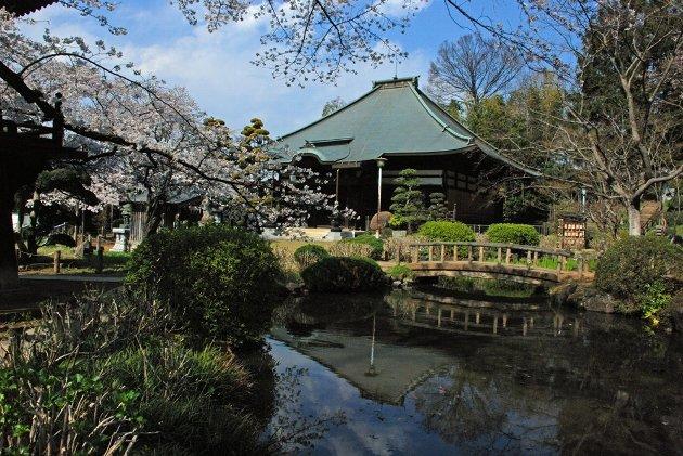 1真覚寺120409-003
