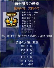 100201 騎士団長の勲章