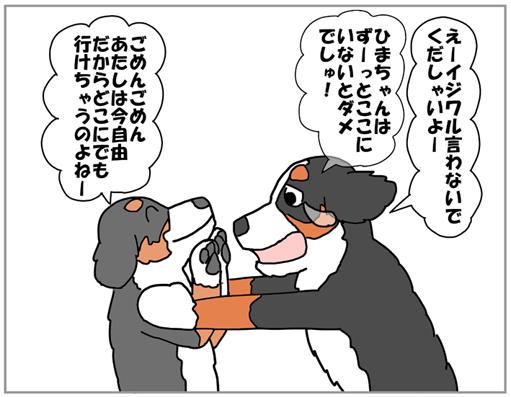 20130217-006.jpg