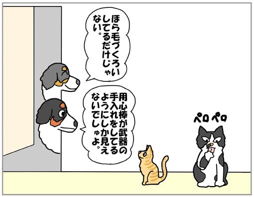 20130310-002.jpg