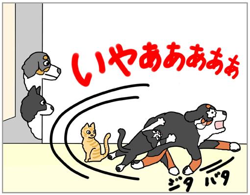 20130310-010.jpg