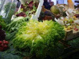 サンジュセップ野菜3