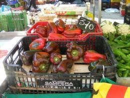サンジュセップ野菜4