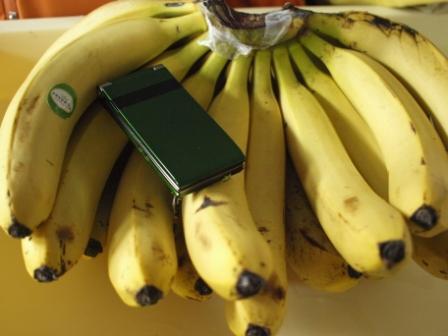 20110210バナナ01