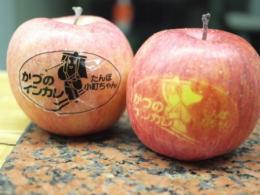 20110209りんご03