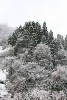 【けんたろうの山】雪山全景