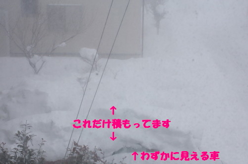 bu-45720001.jpg