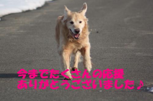 bu-47140001.jpg