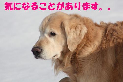 bu-66770001.jpg